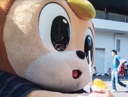 2015】長崎県人権・同和問題啓発強調月間(11/11~12/10)